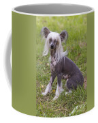 Chinese Crested Dog Coffee Mug