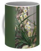 Chinese Sacred Lily Coffee Mug