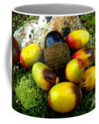 Chinquapin Harvest Coffee Mug