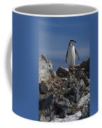Chinstrap On The Look Out.. Coffee Mug