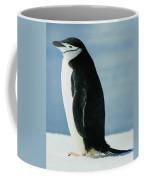 Chinstrap Penguin Coffee Mug