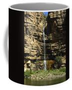 Chipetal Falls Coffee Mug