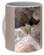 Chipmunk Gaze Coffee Mug