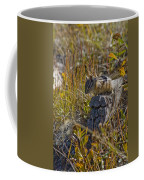 Chipmunk In Yellowstone Coffee Mug