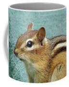 Chipmunk Portrait Coffee Mug