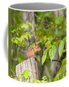 Chipmunk Shares Fence Post Coffee Mug