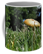 Chipmunks View Of A Mushroom Coffee Mug