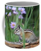 Chippy Coffee Mug
