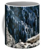 Chiricahua Pinnacles D Coffee Mug