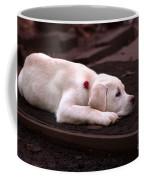 Chocolate Dreams Coffee Mug