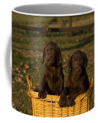 Chocolate Labrador Retriever Pups Coffee Mug