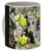 Cholla Flowers Coffee Mug