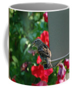 Chow Time At The Bird Feeder Coffee Mug