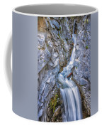 Christine Falls In Mount Rainier National Park Coffee Mug