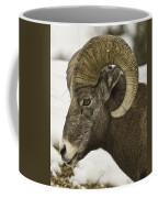 Christmas Big Horn Coffee Mug