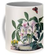 Christmas Rose Coffee Mug by Georg Dionysius Ehret