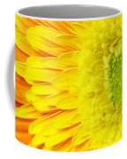 Chrysanthemum Flower Closeup Coffee Mug