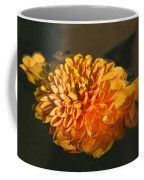 Chrysanthemum Gently Floating In The Fountain Of Campo De Fiori - Rome - Italy Coffee Mug