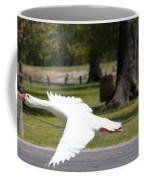 Chuck Flies I Coffee Mug