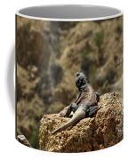 Chucka Walla Overlook Coffee Mug