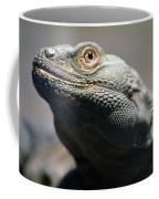 Chuckwalla Coffee Mug