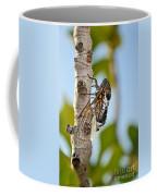 Cicada On Fig Tree Coffee Mug