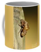 Cicada Shell Coffee Mug