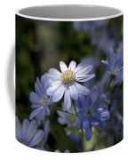 Cineraria  1217 Coffee Mug by Terri Winkler