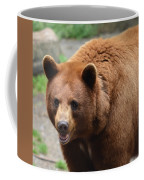 Cinnamon Black Bear Coffee Mug