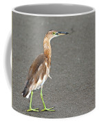 Cinnamon Chestnut Bittern Coffee Mug