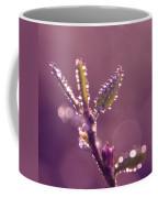 Circles From Nature - M01sqm Coffee Mug