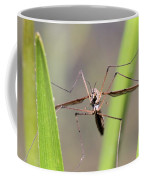 Cirque Du Soleil - Crane Fly Style Coffee Mug