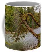 Cispus River At Iron Creek - Washington State Coffee Mug