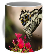 Citrus Swallowtail  Coffee Mug