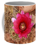 Claret Cup Cactus On Red Rock In Sedona Coffee Mug