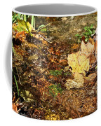 Clean Stream Coffee Mug