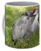 Cleaning  Feathers Coffee Mug