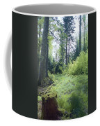 Clearing In Spring Coffee Mug