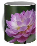 Clearly Gorgeous Coffee Mug