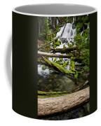 Clearwater Falls Coffee Mug