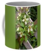 Clematis Grace Coffee Mug