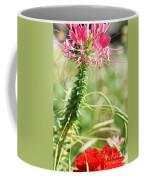 Cleome Hassleriana Coffee Mug