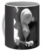 Clerodendrum Ugandense Bud Coffee Mug