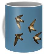 Cliff Swallows Flying Coffee Mug