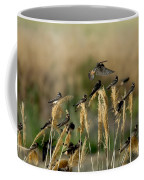 Cliff Swallows Perched On Grasses Coffee Mug