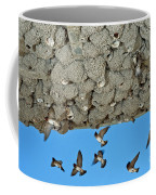 Cliff Swallows Returning To Nests Coffee Mug