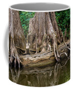Clinging Cypress Coffee Mug