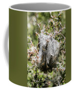 Close Up Detail Of A Nest Of Tent Coffee Mug