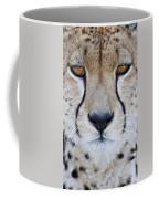 Close-up Of A Cheetah Acinonyx Jubatus Coffee Mug