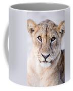 Close-up Of A Lioness Panthera Leo Coffee Mug